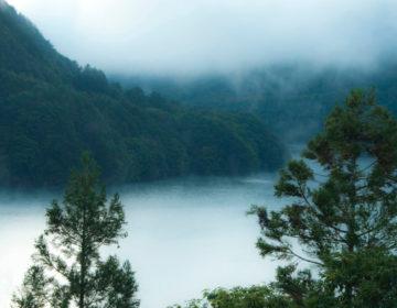 Baño de bosque Monte Ontake