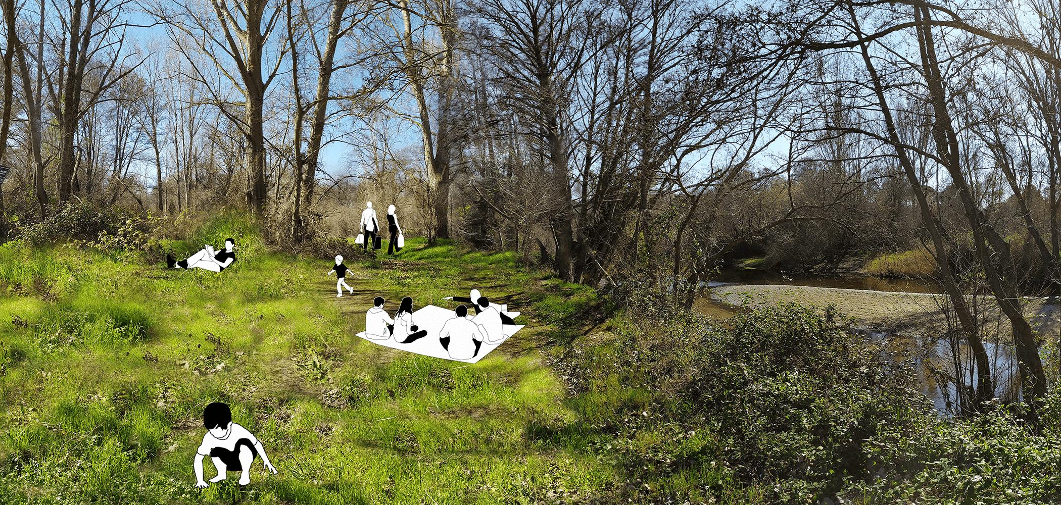 Renaturalización de ribera Alberche en La Poveda (Villa del Prado)